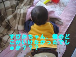 画像 010.jpg